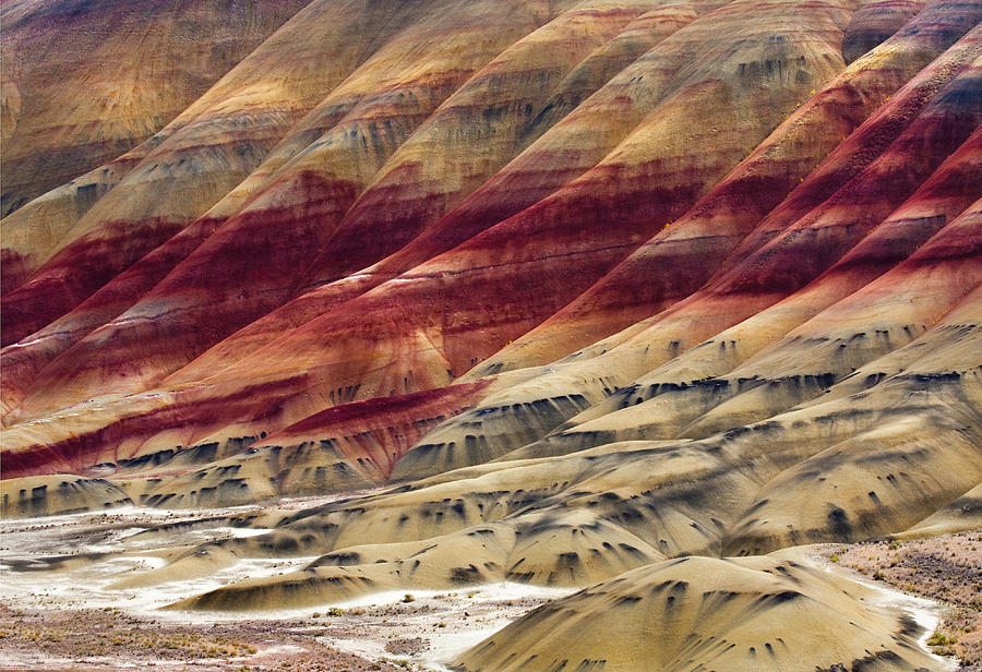 Painted Hills Photograph - Painted Hills Contour by Mike  Dawson
