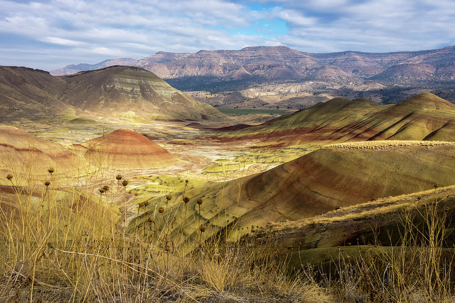 Hills Photograph - Painted Hills by Corey OHara