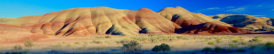 Painted Hills Extreme Pano  by Todd Kreuter