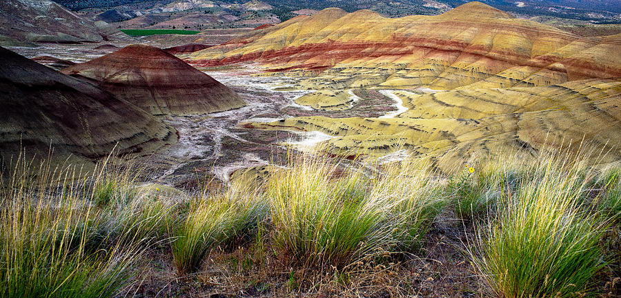 Painted Hills Photograph - Painted Hills From Overlook Trail by Adele Buttolph