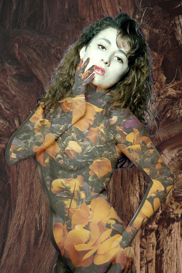 Model Photograph - Painted Lady by Richard Henne