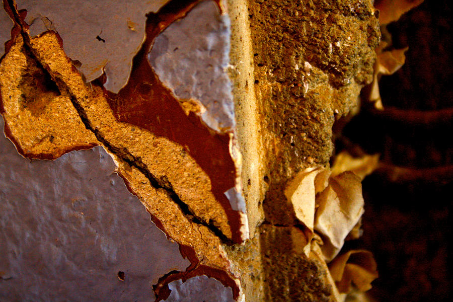 Flake Photograph - Painted Layers by Caroline Walker