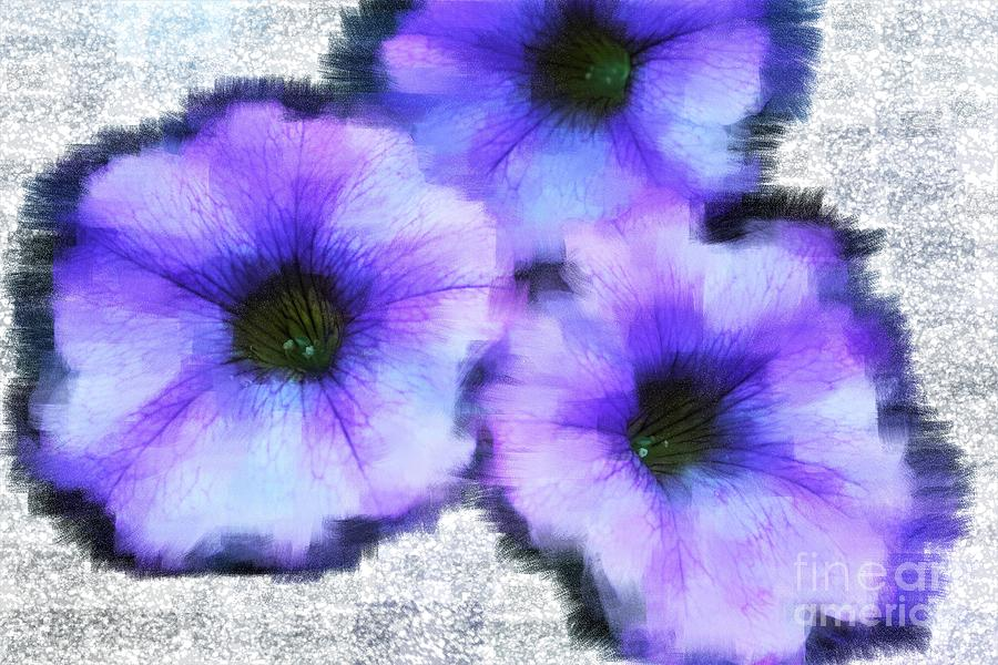 Painted Petunias Photograph