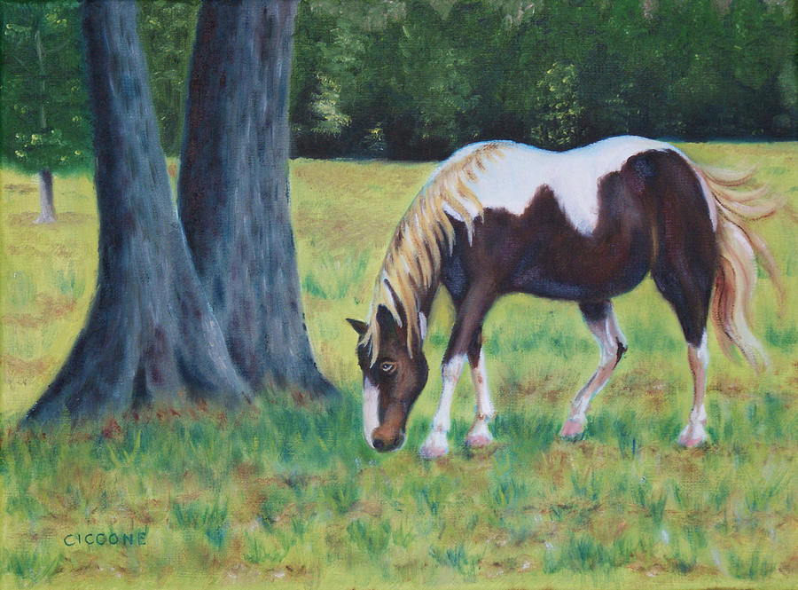 Painted Pony by Jill Ciccone Pike