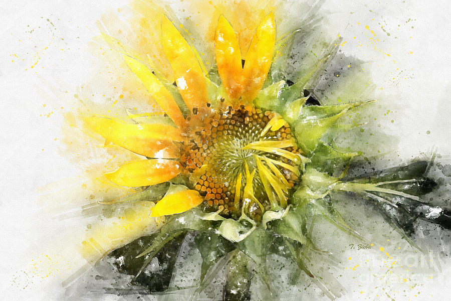 Painted Sunflower by Teresa Zieba