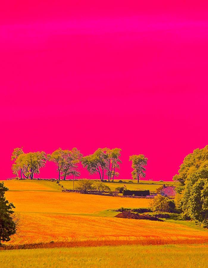 Hot Pink Photograph - Painter Ridge by Gillis Cone