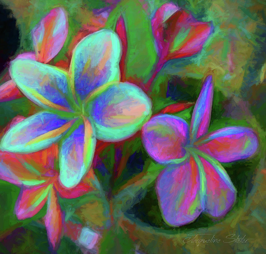 Painterly Frangipanis by Jacqueline Sleter