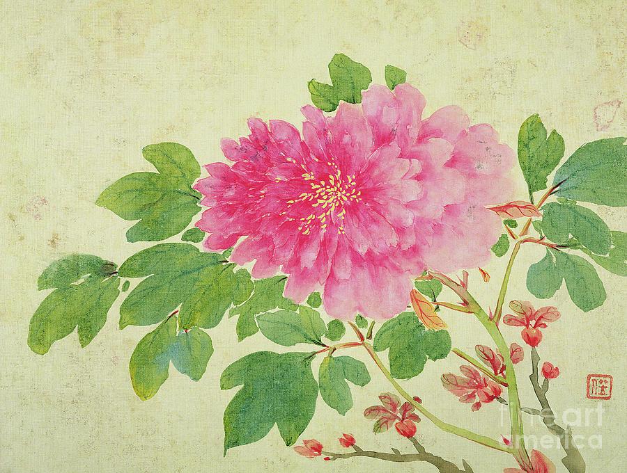 Peonies Painting - Painting Of Peonies by Jiang Yu