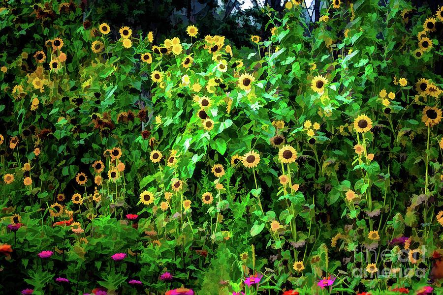 Painting Sunnys Photograph
