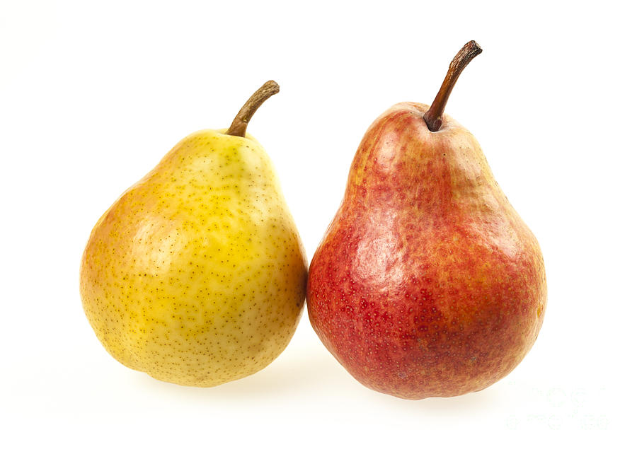 Pear Photograph - Pair Of Pears by Elena Elisseeva