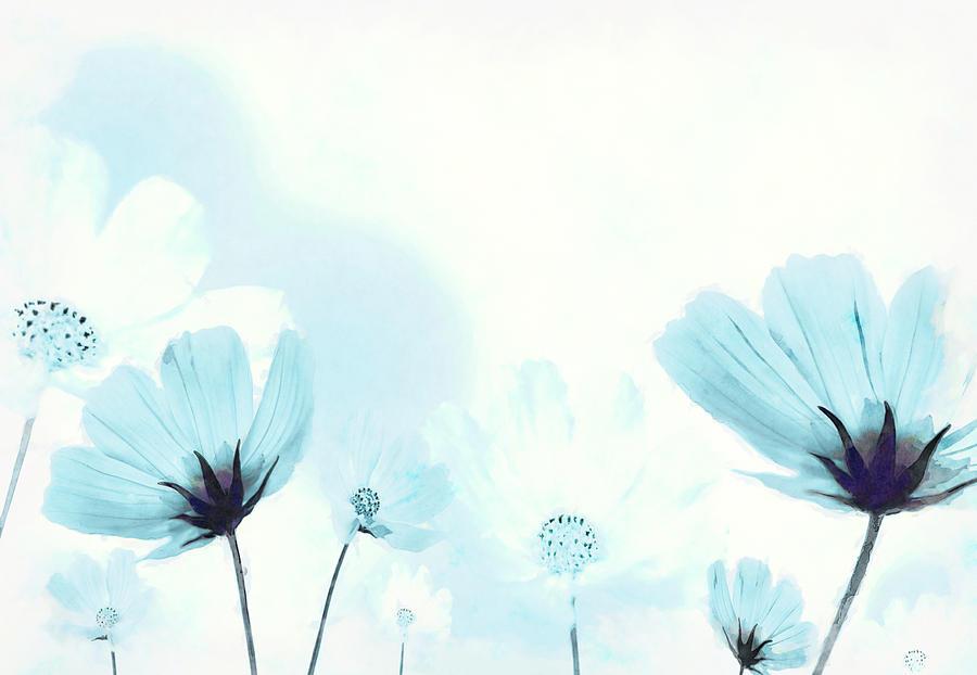 Cosmos Digital Art - Cosmos Flowers by BONB Creative