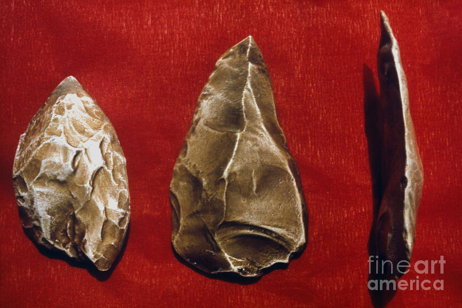 Ancient Photograph - Paleolithic Tools by Granger