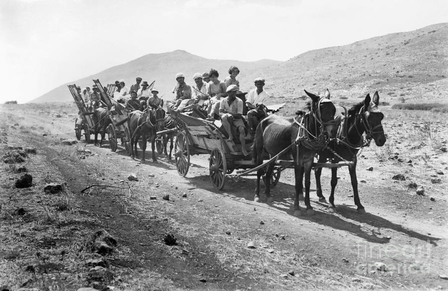1920 Photograph - Palestine Colonists, 1920 by Granger