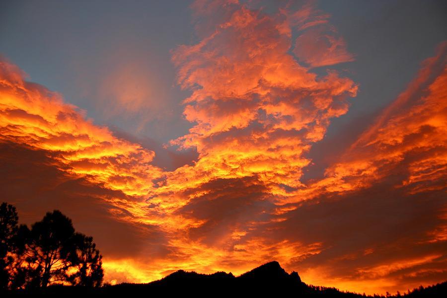 Sunrise Photograph - Palisade Sunrise by Perspective Imagery