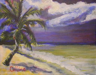Palm Tree Painting - Palm Beach by C D  Collins