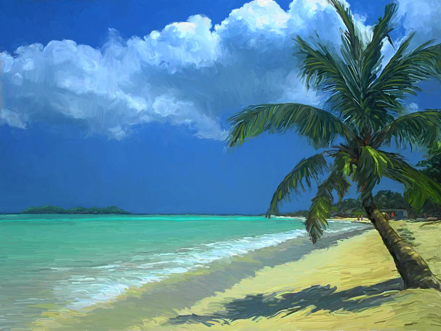 Palm Beach in the Keys by David Van Hulst