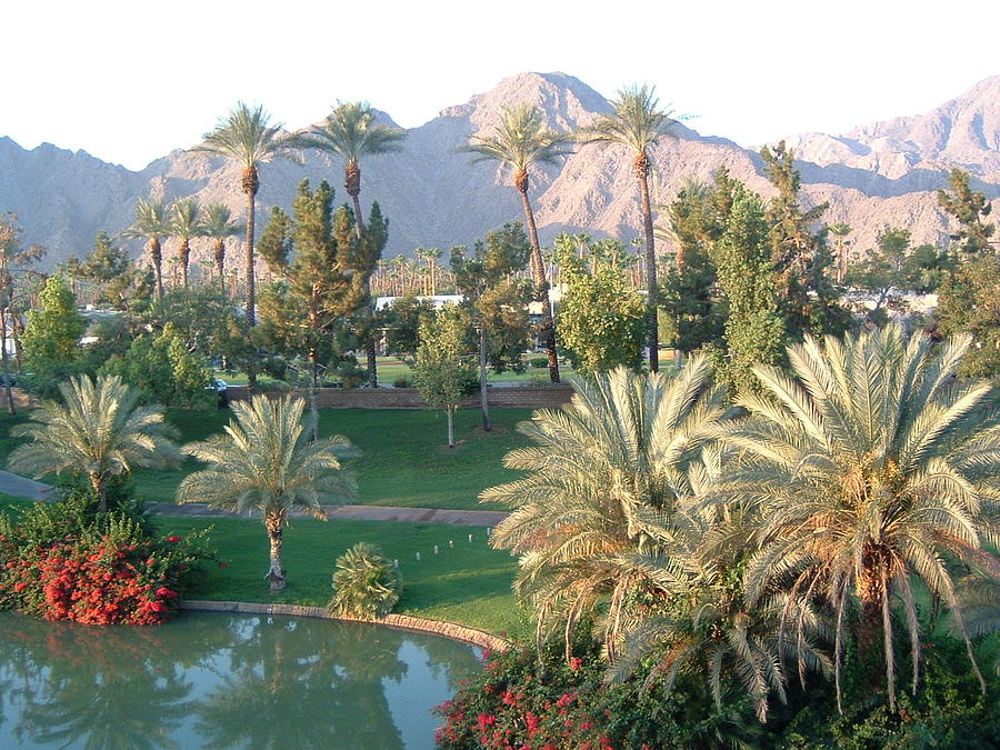 Landscape Photograph - Palm Springs Ca by Cheryl Ehlers