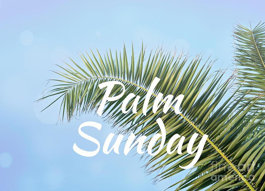 Palm Sunday Photograph
