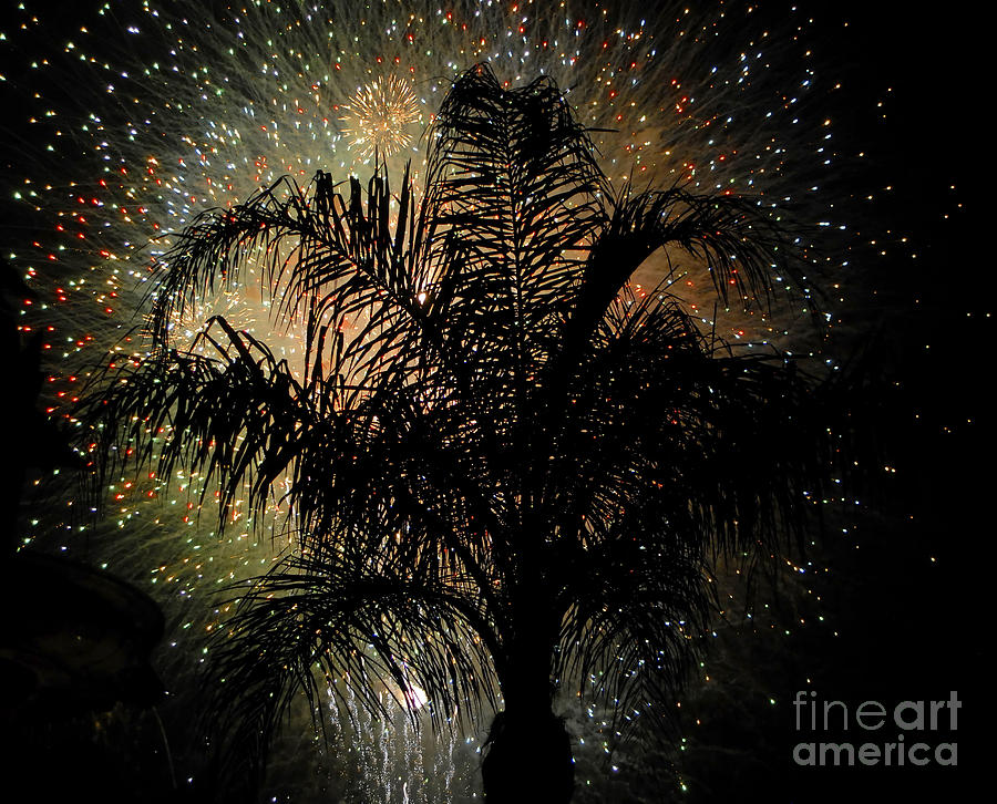 Fireworks Photograph - Palm Tree Fireworks by David Lee Thompson