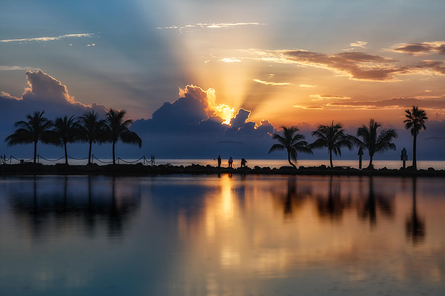 Palm Tree Framed Sunrise Photograph By Andres Leon