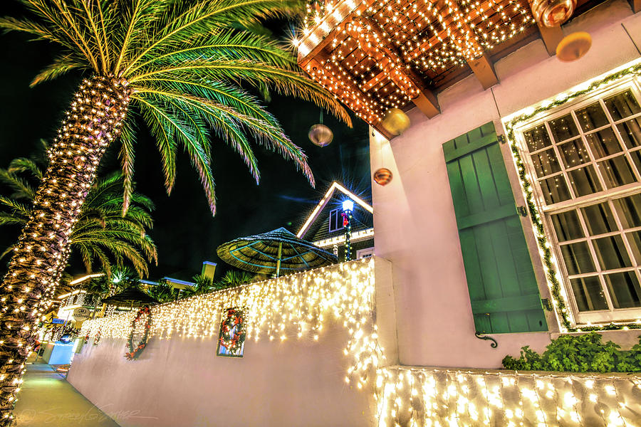 Palm trees and ornaments by Stacey Sather