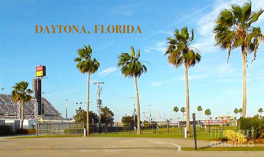 Daytona Digital Art - Palm Trees Of Daytona Florida by Karen Francis