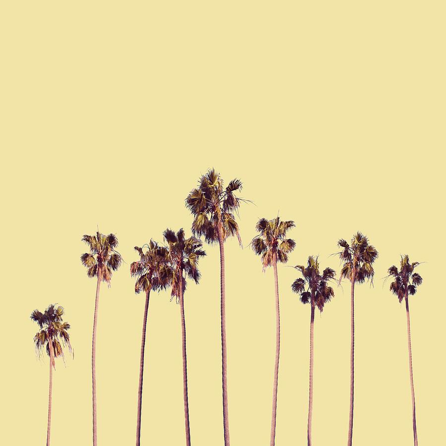 palm trees yellow digital art by bekim art