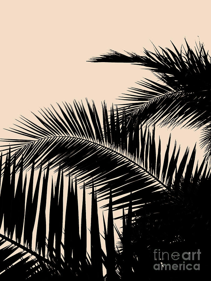 Palms on Pale Pink by EMANUELA CARRATONI