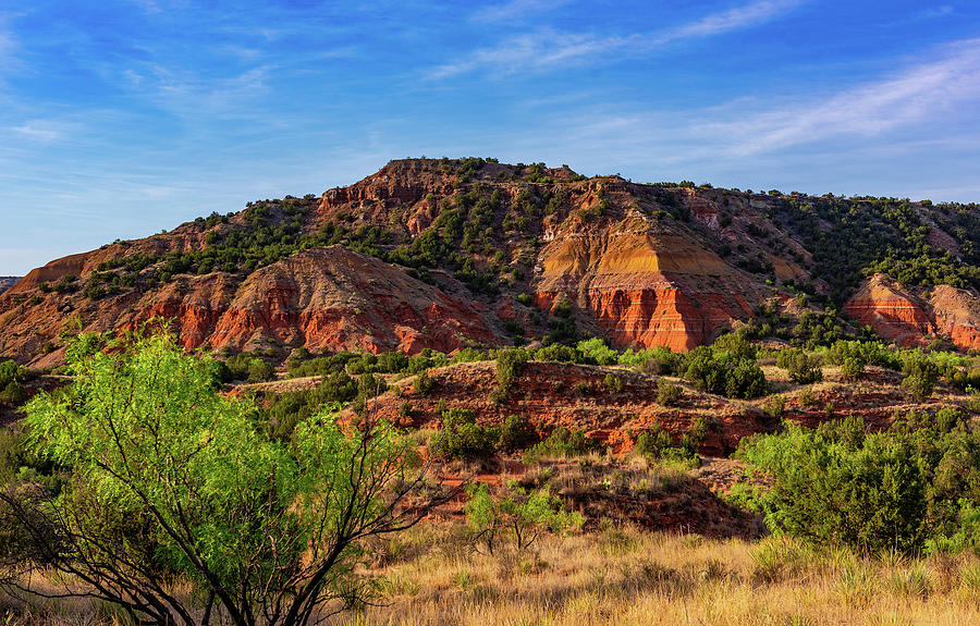Palo Duro Canyon 1 by Stephen Anderson