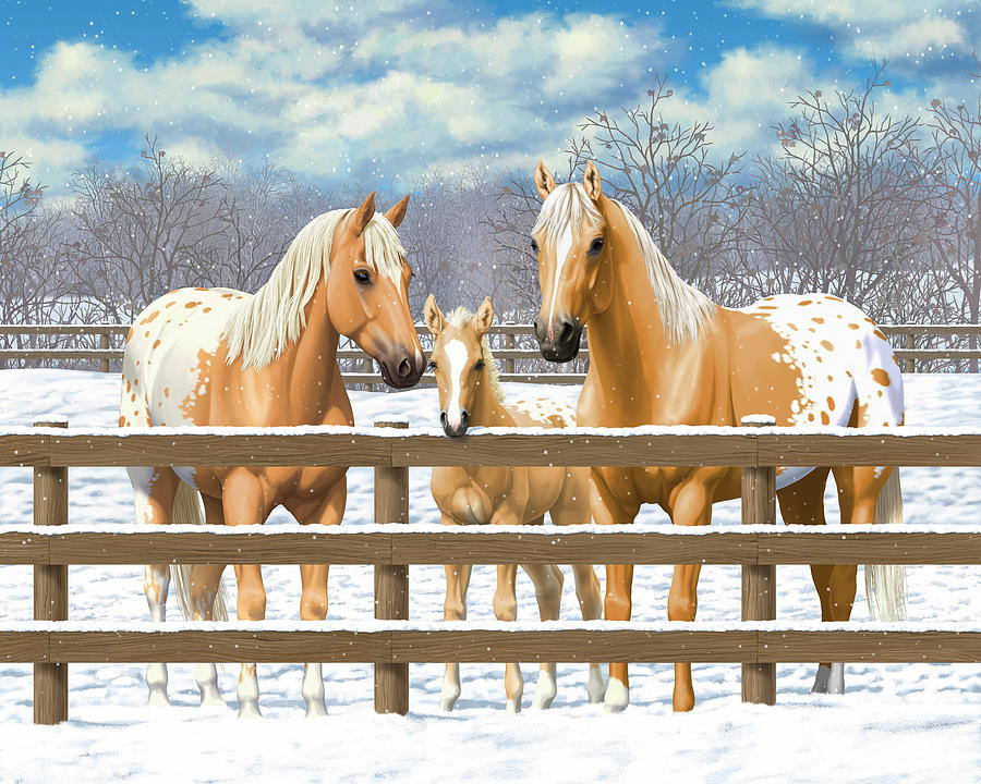 Horses Painting - Palomino Appaloosa Horses In Snow by Crista Forest