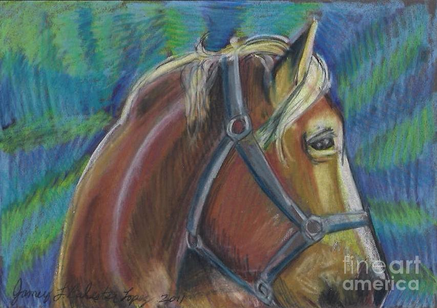 Palomino  Drawing Painting by Jamey Balester