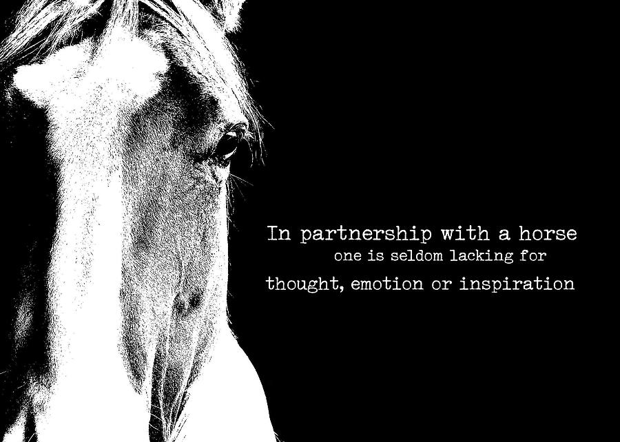 Horse Photograph - Palomino Art Quote by JAMART Photography
