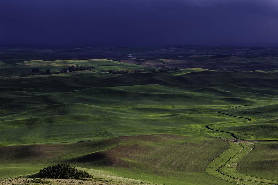 Palouse Photograph - Palouse Storm by Matt Cohen