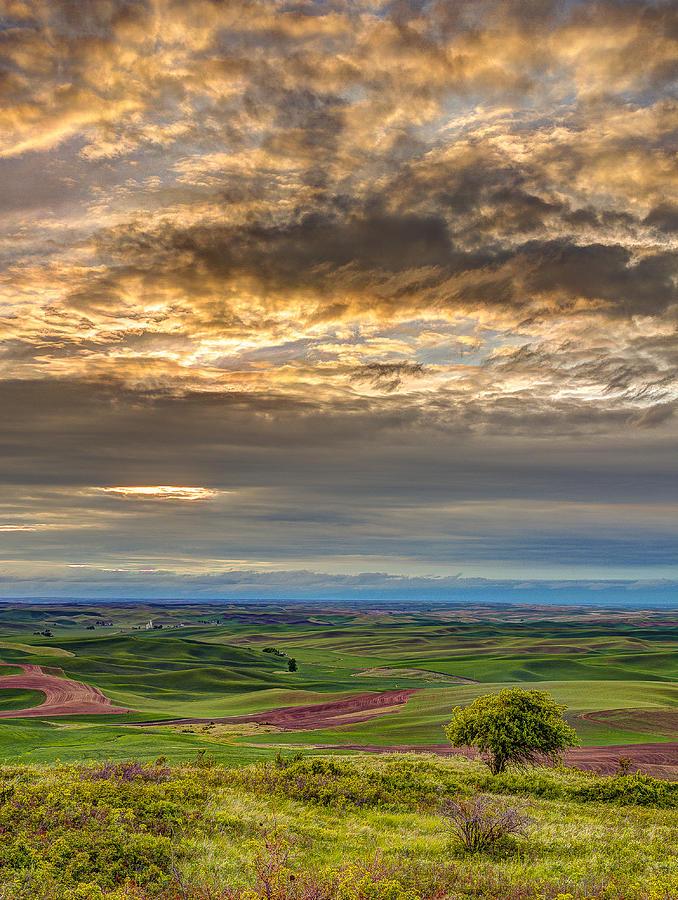 Palouse Photograph - Palouse Sunset by John Willy