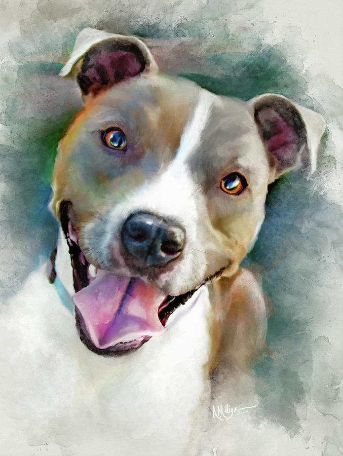 Pitbull Painting - Pittie by Brushwork Portraits