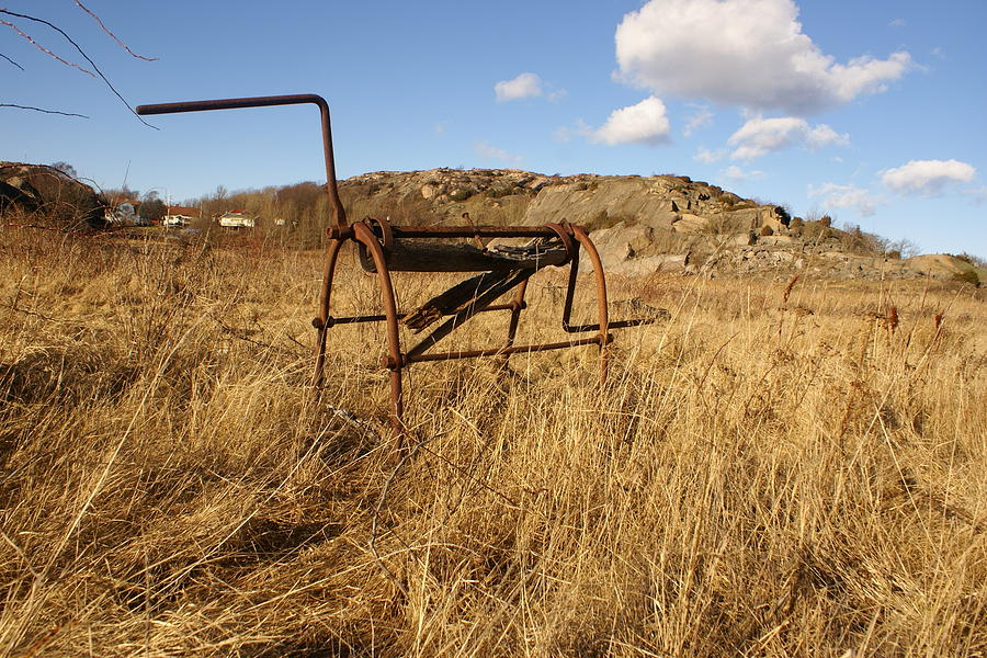 Foto Photograph - Pampas Horse by Pedro Benjamin Munoz