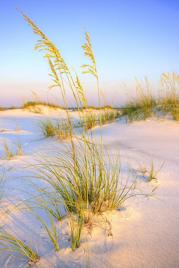 Panama City Beach Photograph - Panama City Sands by JC Findley