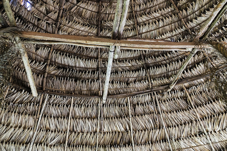 Panama - Embera Hut Ceiling Photograph