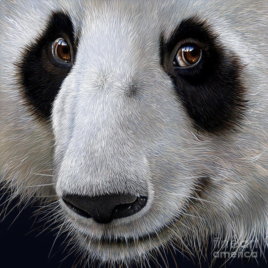 Panda Painting - Panda Bear by Jurek Zamoyski