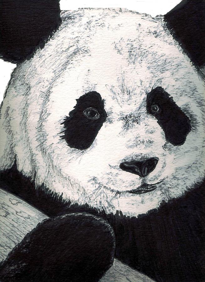 Panda Painting - Panda by Debra Sandstrom