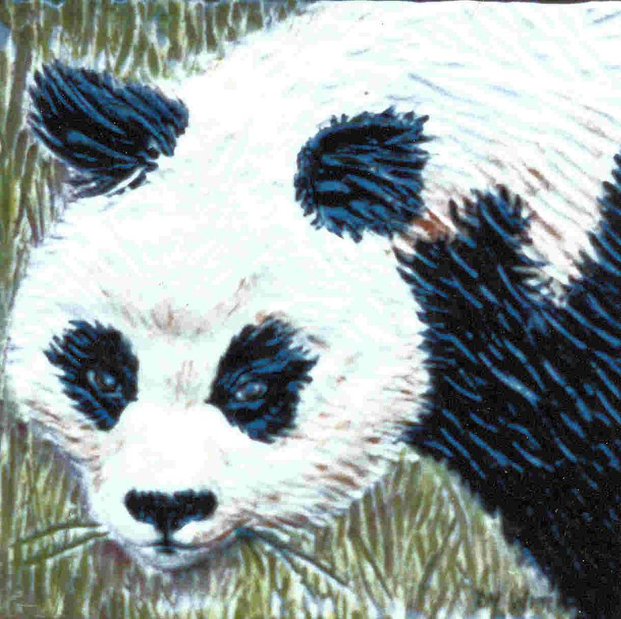 Panda Relief - Panda by Dy Witt