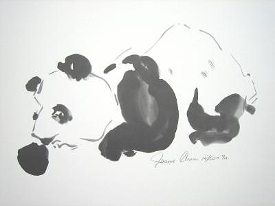 Limited Edition Drawing - Panda by Joanie Arvin