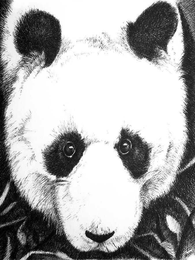 Panda Portrait by Matt Hood