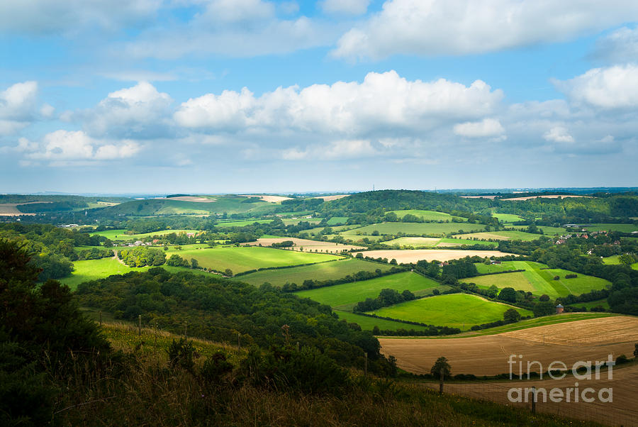 Panorama of hampshire countryside from Butser Hill near Portsmou by Peter Noyce