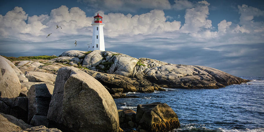 Panorama Of Peggys Cove Lighthouse With Flying Gulls Photograph