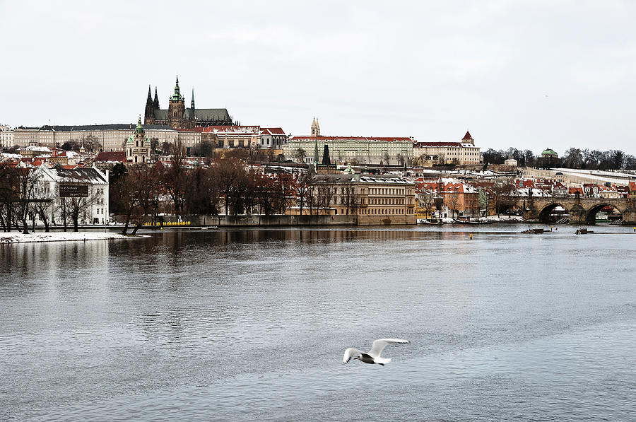 Bridge Photograph - Panorama Of Prague In Winter  by Stanislav Stoklas