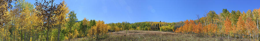 Aspens Photograph - Panoramic Fall Colors Vista by Jeff Schomay