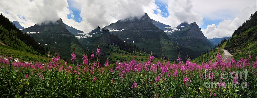 Wall Decor Photograph - Panoramic View Of going To Sun Road by Akshay Thaker