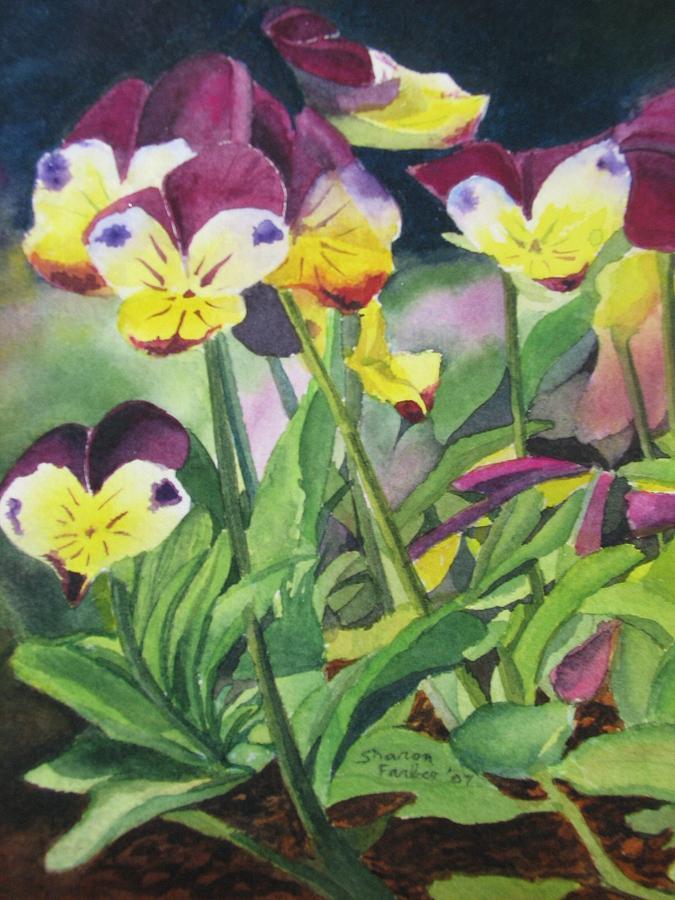 Pansies Painting - Pansies by Sharon Farber
