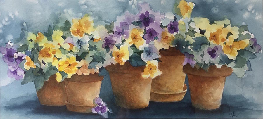 Pansy Pots by Lael Rutherford